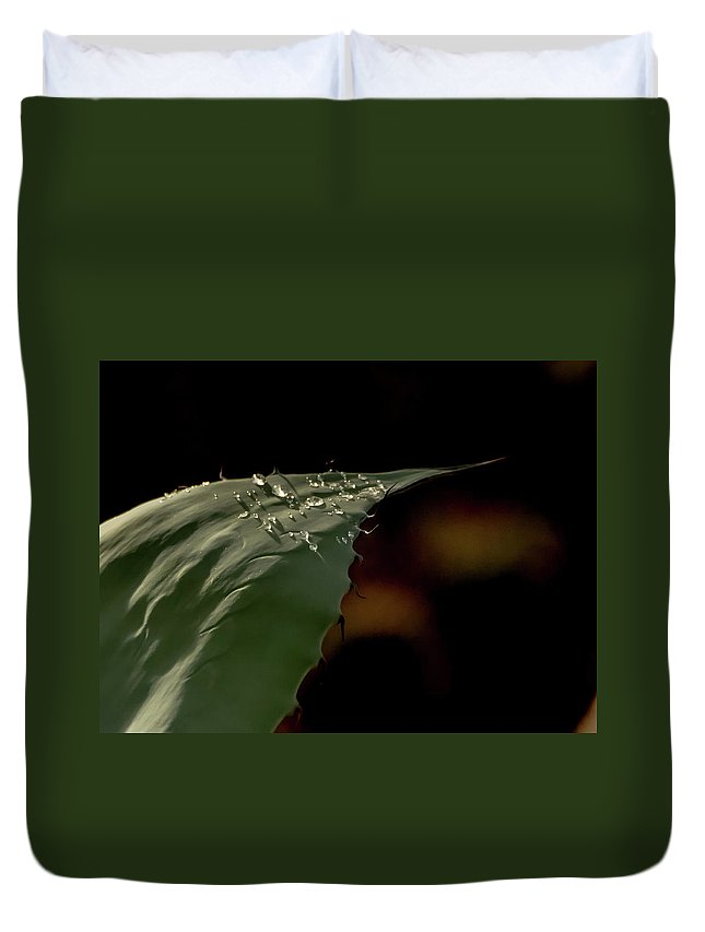 Aloe Duvet Cover featuring the photograph Aloe And Water Droplets by Tam Ryan