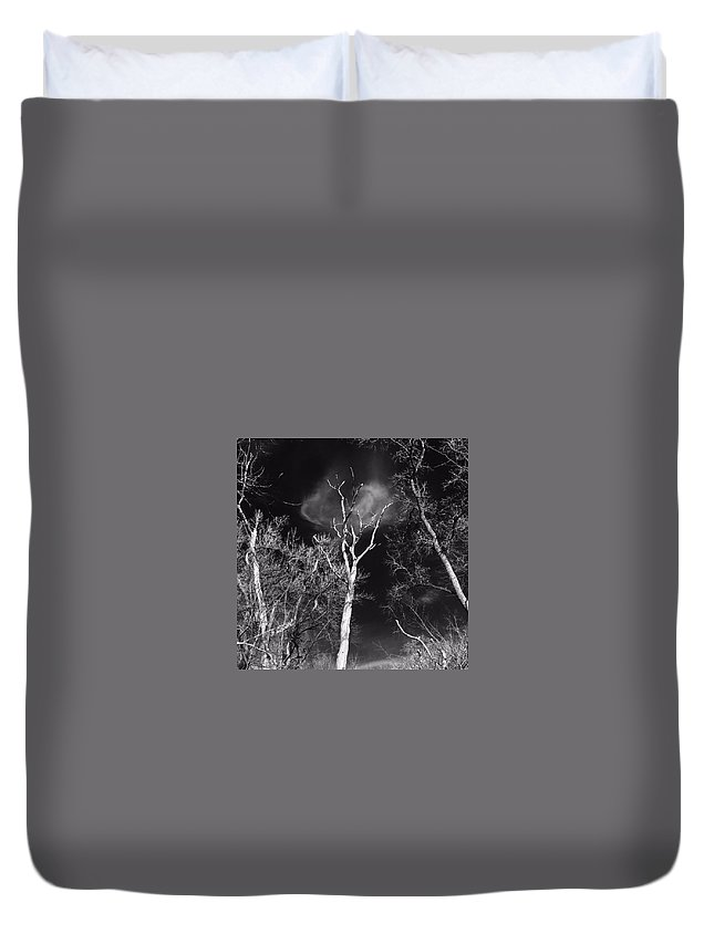 Trees Duvet Cover featuring the photograph Alone by Erin Townsend