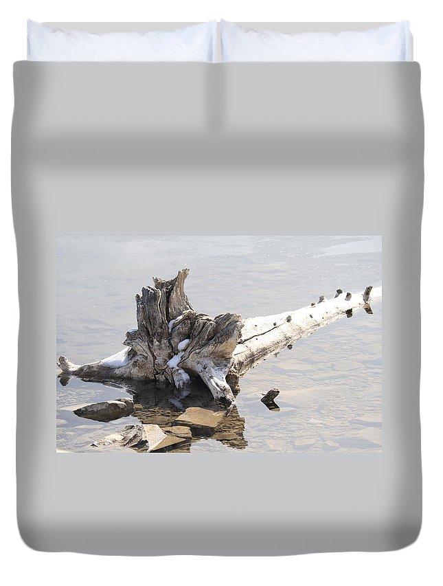 Tree Duvet Cover featuring the photograph Alone by Tiffany Vest