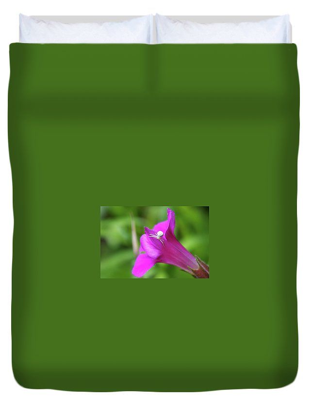 Spiders Duvet Cover featuring the photograph Along Came A Spider by Jeff Swan