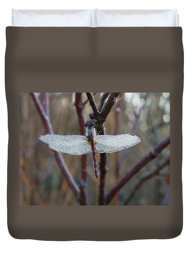 Insects Duvet Cover featuring the photograph Along Came A Spider by Peggy King