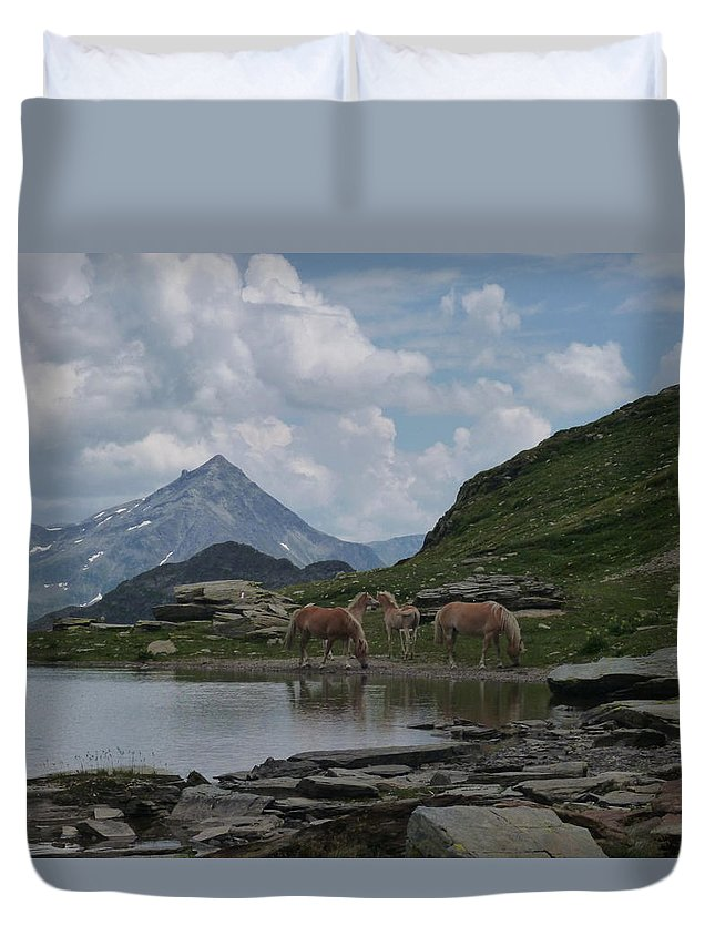 Alpes Duvet Cover featuring the photograph Alps' Horses by Laura Greco