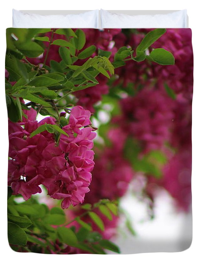 Amaranth Duvet Cover featuring the photograph Amaranth Pink Flowering Locust Tree In Spring Rain by Colleen Cornelius