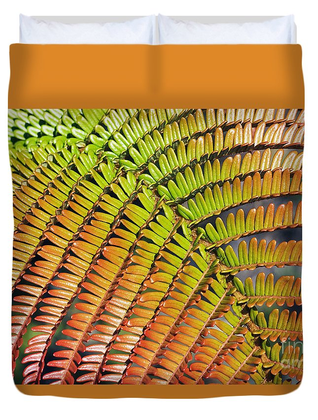 Abstract Duvet Cover featuring the photograph Amaumau Fern Frond by Greg Vaughn - Printscapes