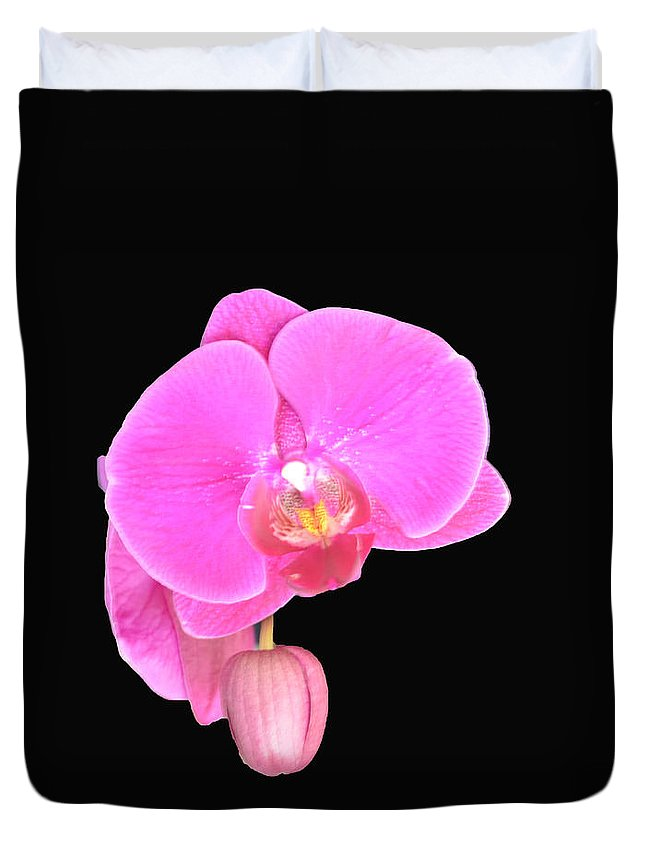 Orchid Duvet Cover featuring the photograph Amazing Pink Orchid With Black Background Orquidea by Maria isabel Villamonte