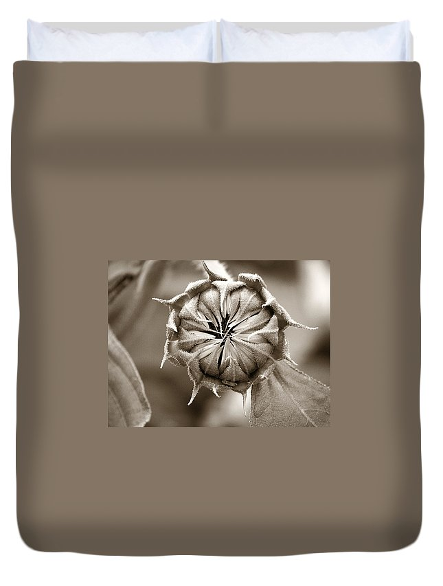Sunflower Duvet Cover featuring the photograph Amazing Sunflower Bud by Marilyn Hunt