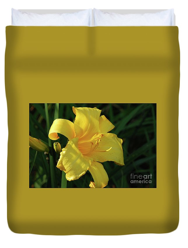 Lily Duvet Cover featuring the photograph Amazing Yellow Lily Flowering In A Garden by DejaVu Designs