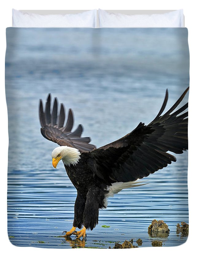 Hood Duvet Cover featuring the photograph American Bald Eagle Sets Down On Fish by Gary Langley
