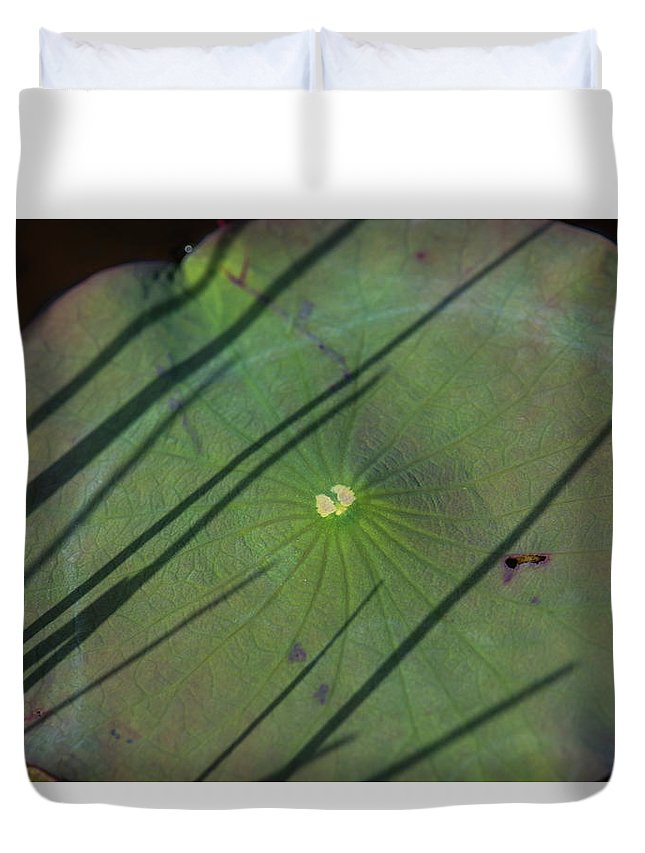 American Lotus Duvet Cover featuring the photograph American Lotus by Robert Potts