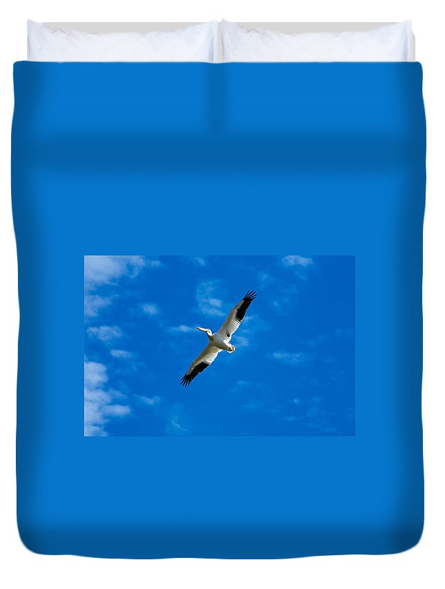 American Duvet Cover featuring the photograph American White Pelican by Marilyn Hunt