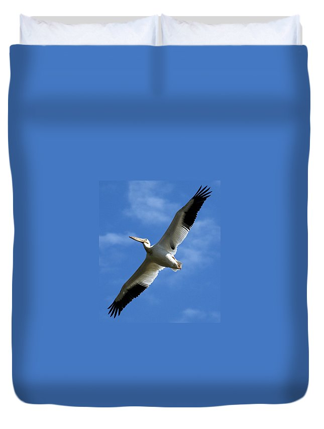 Bird Duvet Cover featuring the photograph American White Pelican Wings by Marilyn Hunt