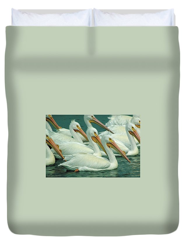 White Pelicans Duvet Cover featuring the photograph American White Pelicans by Bruce Morrison