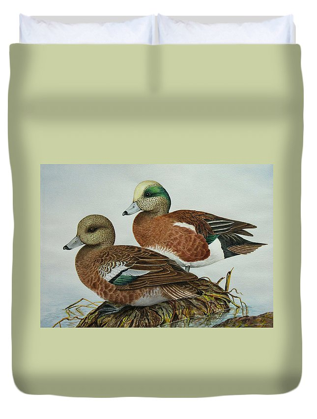 Ducks Duvet Cover featuring the painting American Widgeons by Elaine Booth-Kallweit