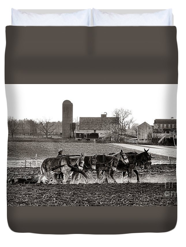 Amish Duvet Cover featuring the photograph Amish Agriculture by Olivier Le Queinec