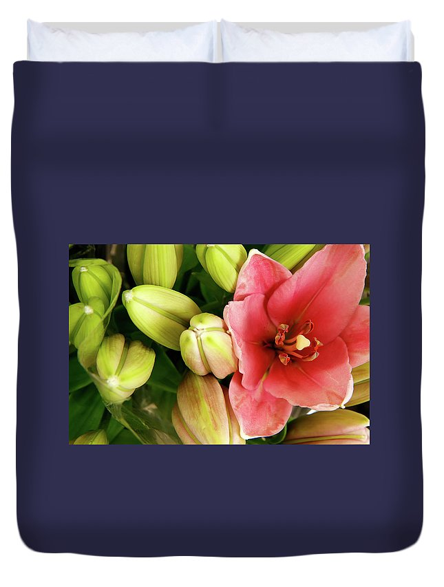 Amsterdam Duvet Cover featuring the photograph Amsterdam Buds by KG Thienemann