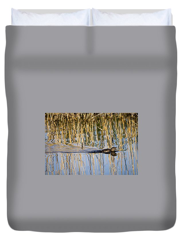 Wildlife Duvet Cover featuring the photograph An Awful Hurry by Albert Seger
