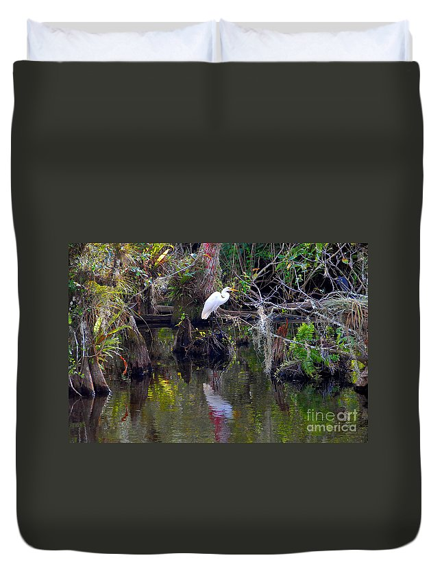 Everglades National Park Florida Duvet Cover featuring the photograph An Egrets World by David Lee Thompson