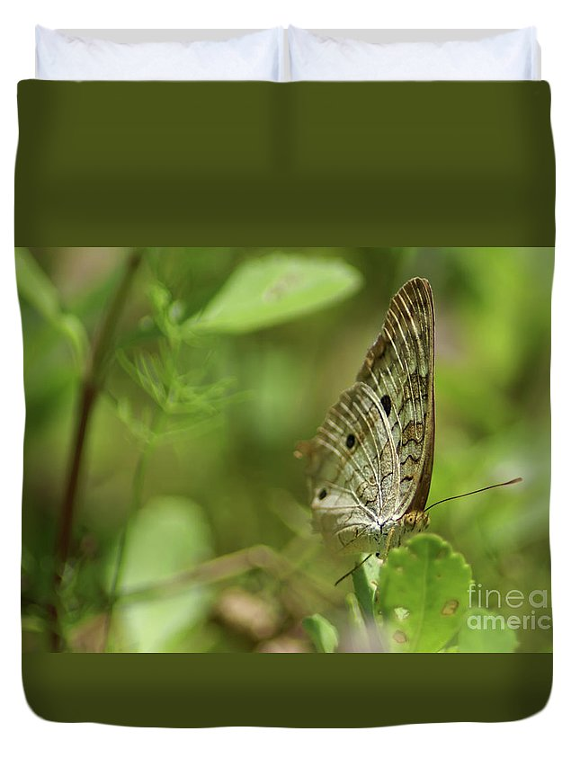 Anartia Butterfly Duvet Cover featuring the photograph Anartia Butterfly In Wonderland by Olga Hamilton