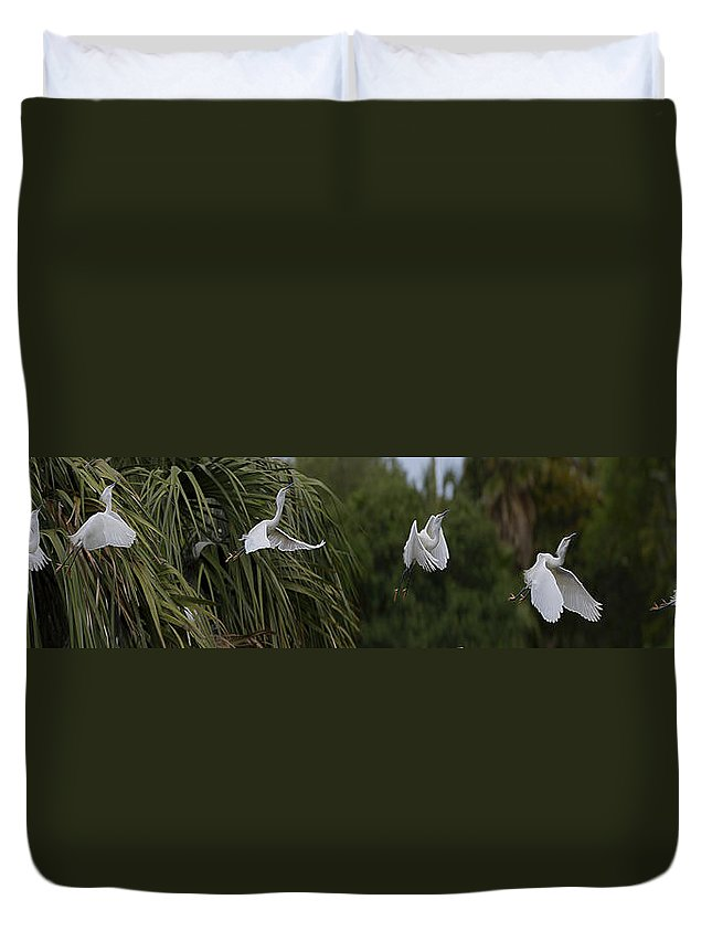 Nature Duvet Cover featuring the digital art Anatomy Of Flight 2 by William Horden