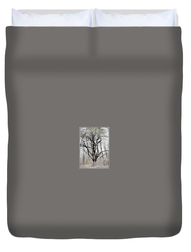 Black And White Trees Big Tree Nature Lines Art Duvet Cover featuring the photograph Anchor Tree by Sebastian Ventrone