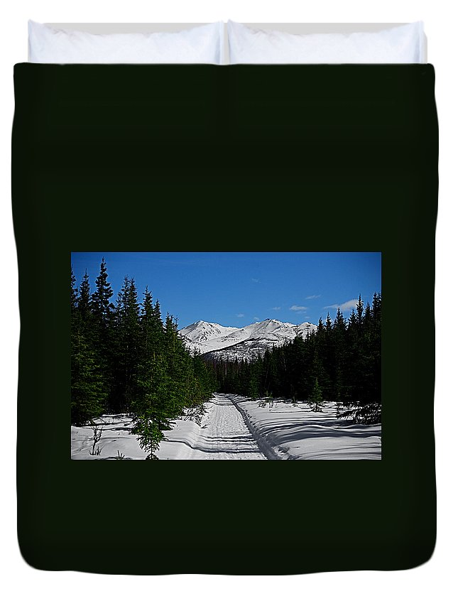 Anchorage Mountains White Trees Duvet Cover featuring the photograph Anchorage Mountains by Galeria Trompiz