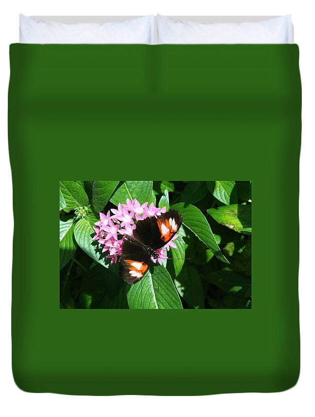 Butterfly Duvet Cover featuring the photograph Anchored Down - Butterfly by Lynn Michelle
