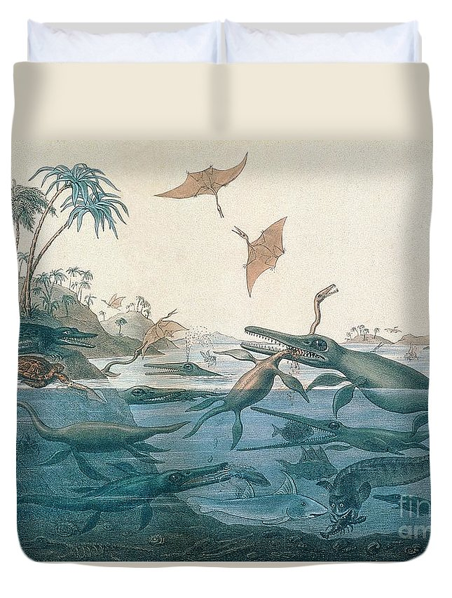 Duria Antiquior (ancient Dorset) Depicting A Imaginative Reconstruction Of The Life Of The Jurassic Seas Duvet Cover featuring the drawing Ancient Dorset by Henry Thomas De La Beche