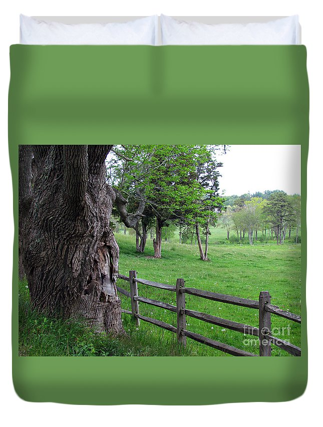 Landscape Duvet Cover featuring the photograph Ancient Guardian by Roxanne Marshal