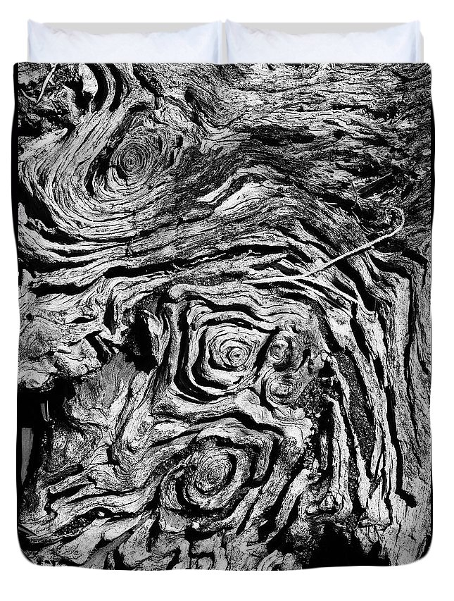 Tree Duvet Cover featuring the photograph Ancient Stump by Christopher Holmes