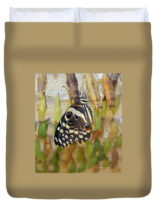 Butterfly Duvet Cover featuring the photograph And Life Begins by Shelley Jones