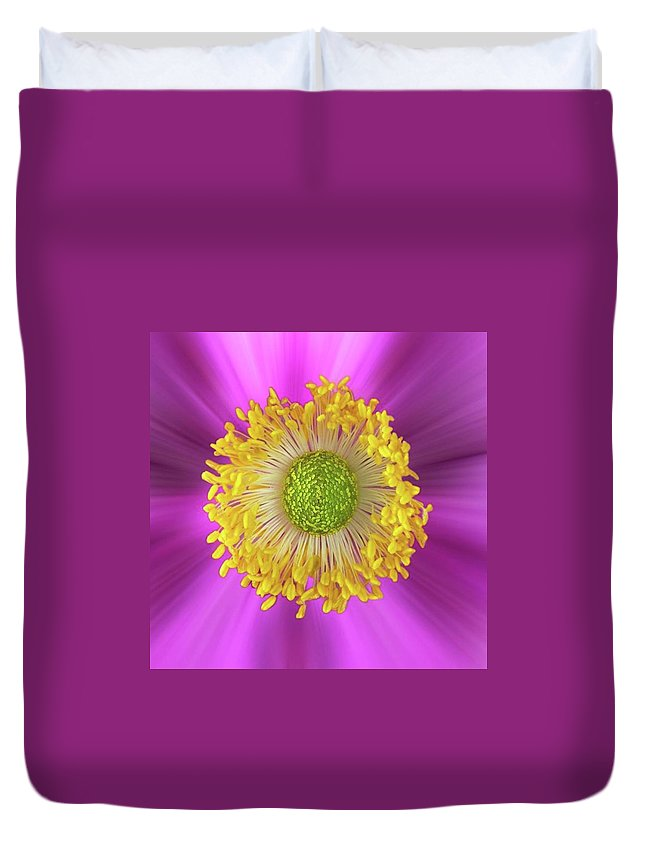 Beautiful Duvet Cover featuring the photograph Anemone Hupehensis 'hadspen by John Edwards