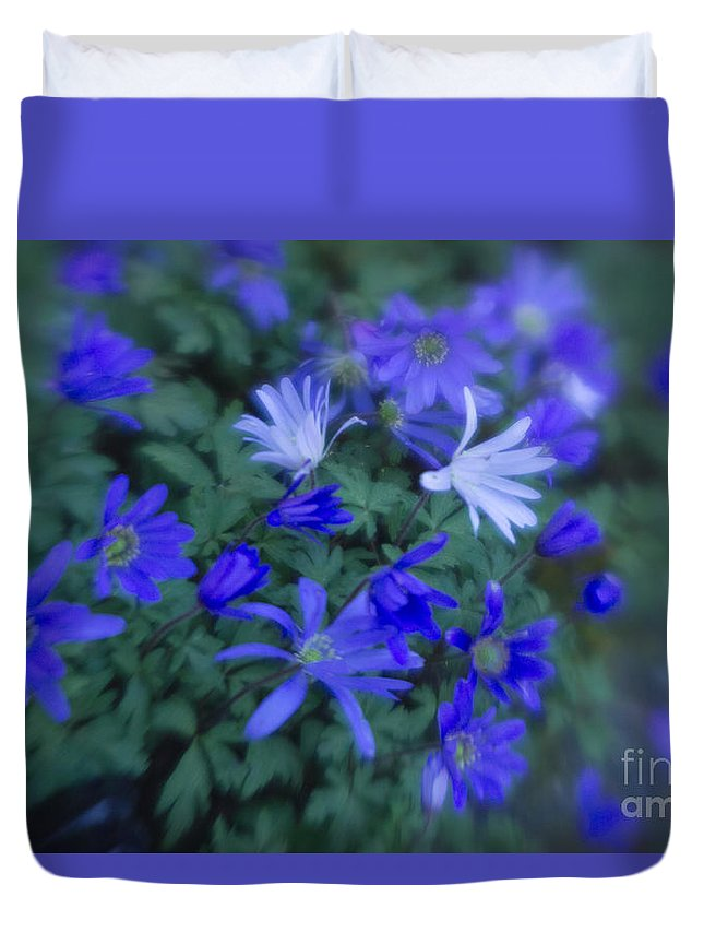 Anemones Duvet Cover featuring the photograph Anemones 1 by Jill Greenaway
