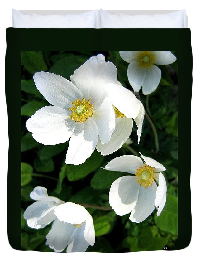 Anemones Duvet Cover featuring the photograph Anemones by Will Borden