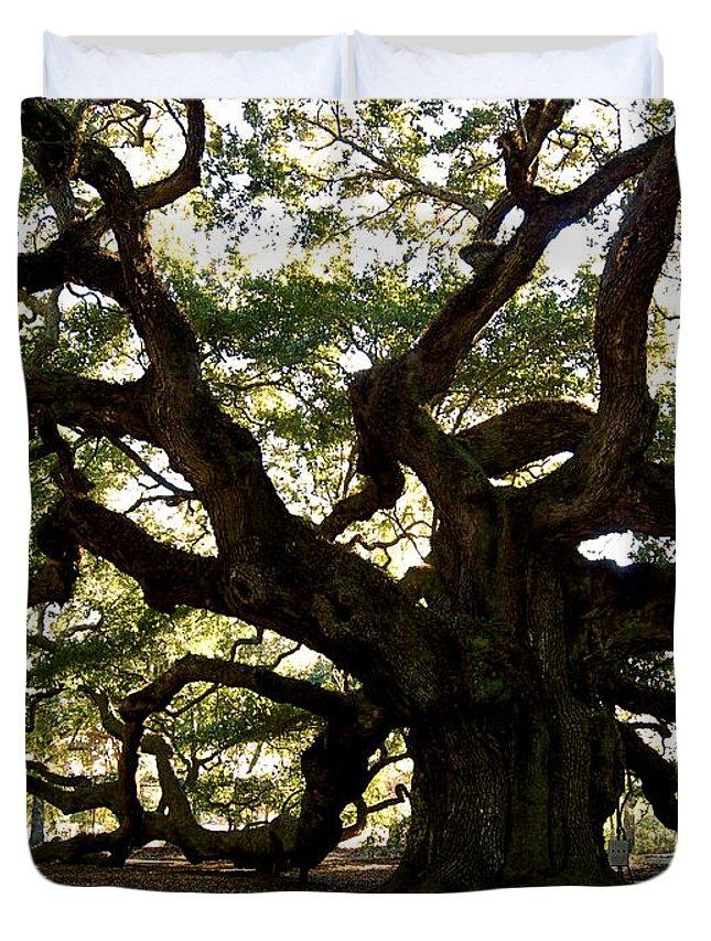 Angel Oak Duvet Cover featuring the photograph Angel Oak In November by Susanne Van Hulst