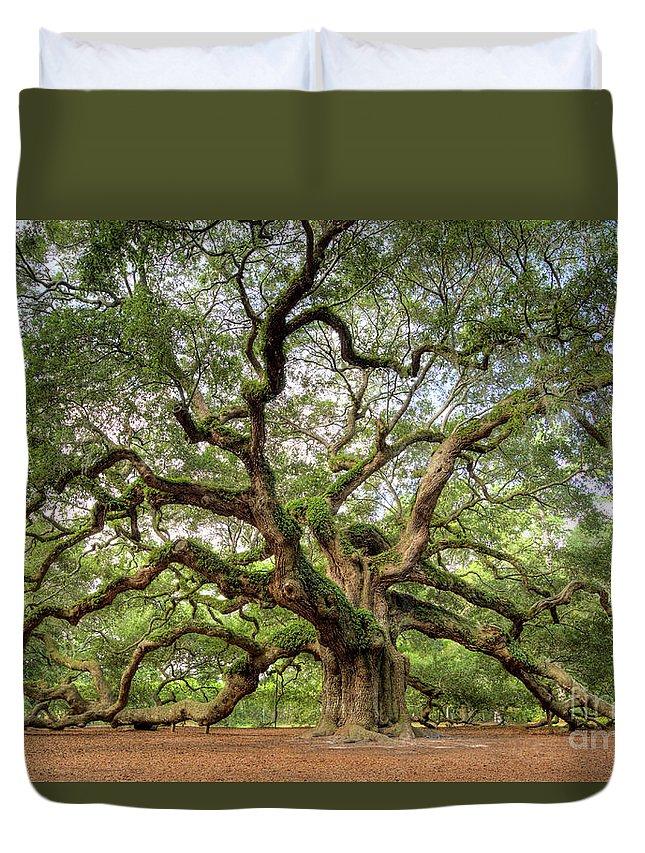 Oak Tree Duvet Covers
