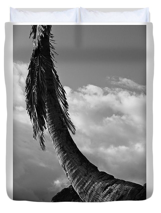 Hawaii Duvet Cover featuring the photograph Angel Wings by Aquadro Photography