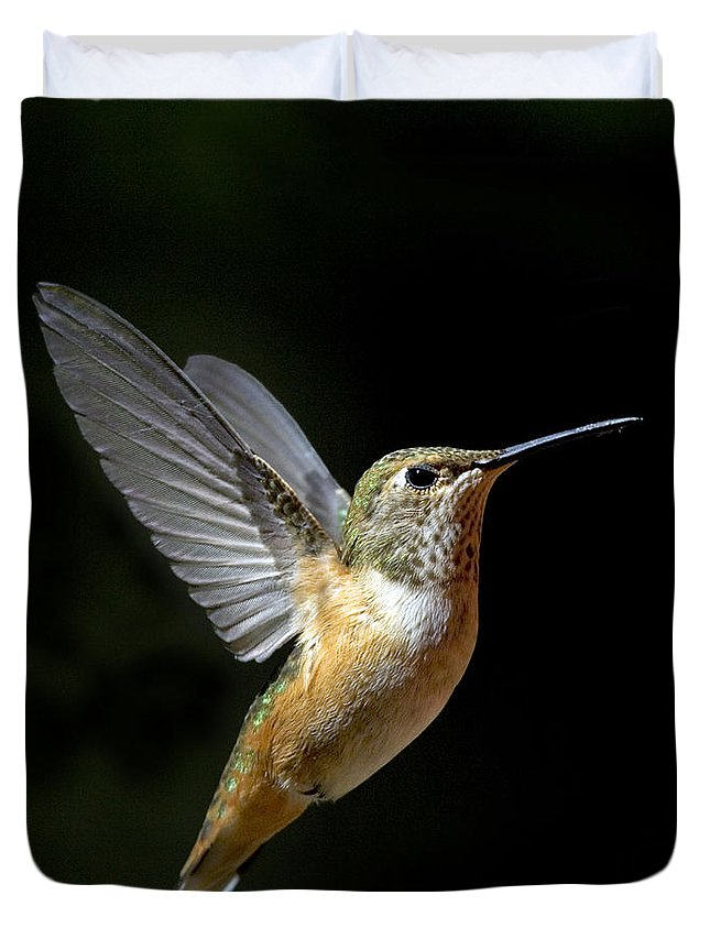 Rufous Hummingbird Duvet Cover featuring the photograph Angelic Hummer by Randall Ingalls