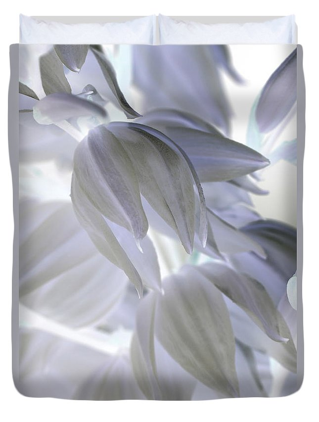 Inverted Colors Duvet Cover featuring the photograph Angels Wings by Carol Komassa