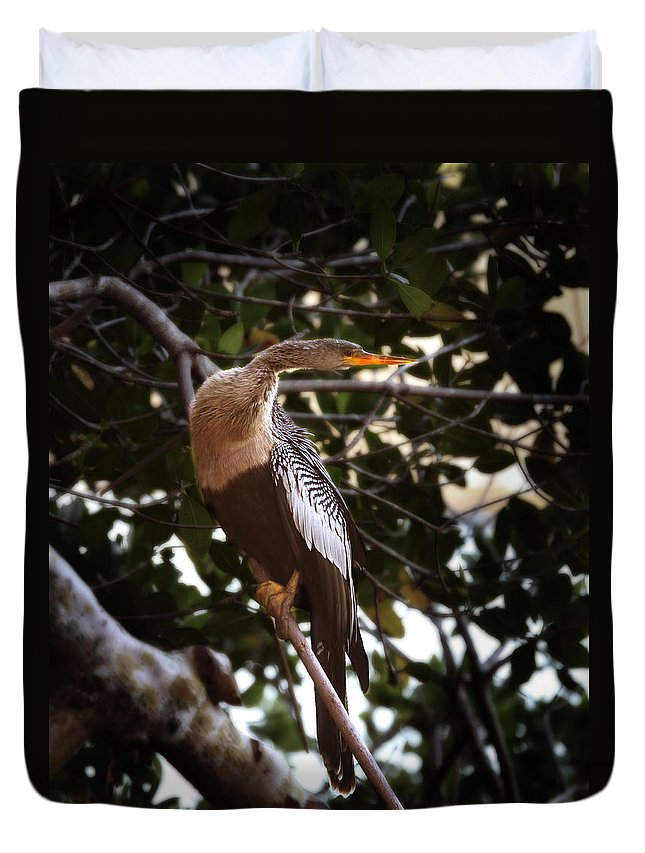 Anhinga Duvet Cover featuring the photograph Anhinga Water Fowl by Joseph G Holland