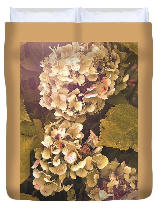 Hydrangea Duvet Cover featuring the photograph Annabelle by JAMART Photography