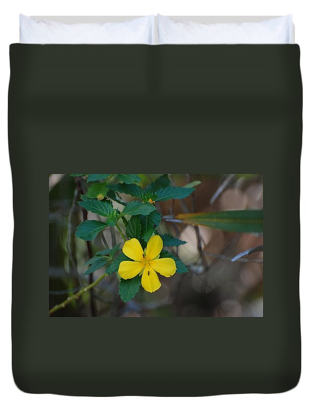 Macro Duvet Cover featuring the photograph Ant Flowers by Rob Hans