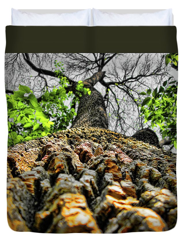 Tree Duvet Cover featuring the photograph Ants View by Douglas Barnard