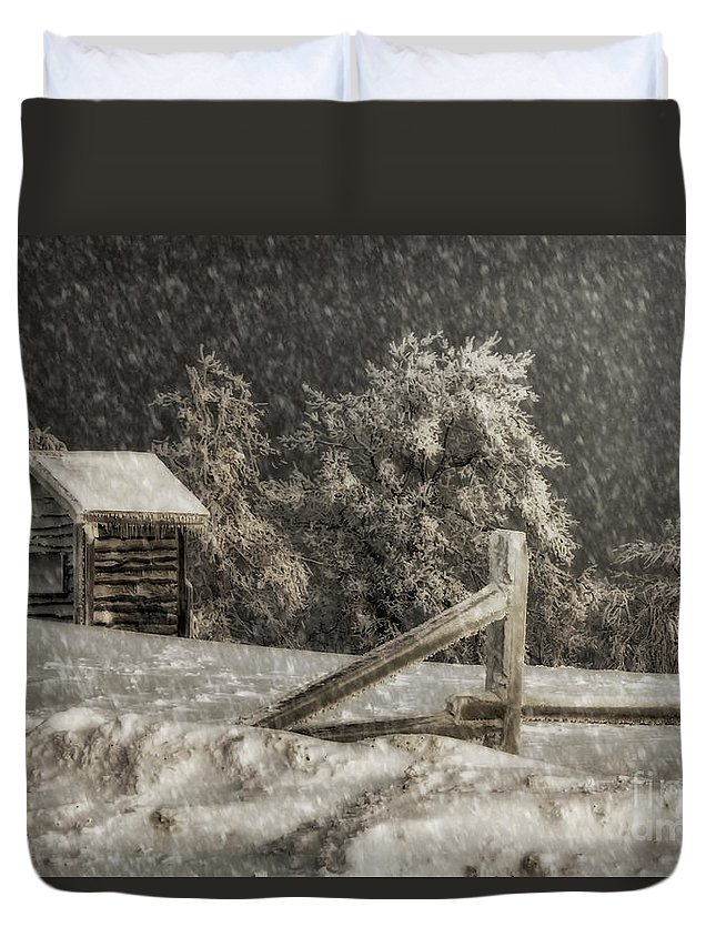 Shed Duvet Cover featuring the photograph Any Port In A Storm by Lois Bryan