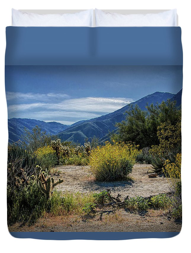 Art Duvet Cover featuring the photograph Anza-borrego Desert State Park Desert Flowers by Randall Nyhof