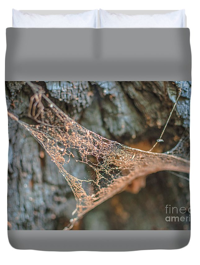 Landscape Duvet Cover featuring the photograph Apathy by Lyudmila Prokopenko