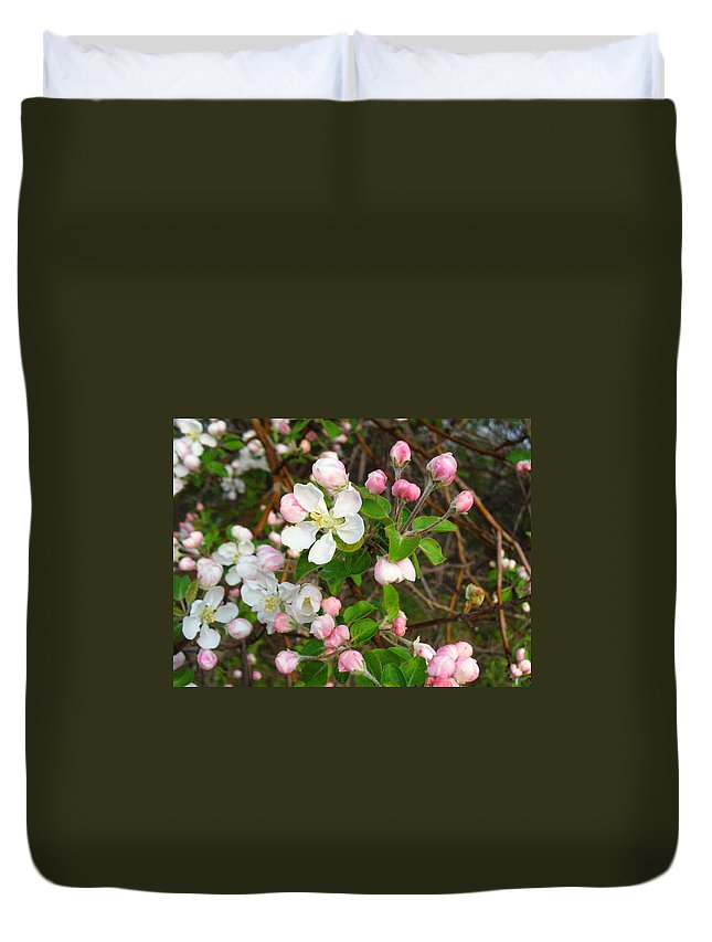 Blossoms Duvet Cover featuring the photograph Apple Blossom Pink by Peggy King