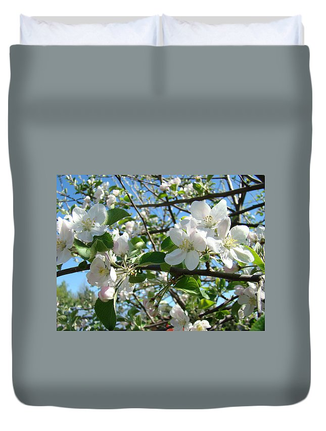 �blossoms Artwork� Duvet Cover featuring the photograph Apple Blossoms Art Prints 60 Spring Apple Tree Blossoms Blue Sky Landscape by Baslee Troutman