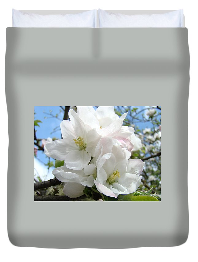 �blossoms Artwork� Duvet Cover featuring the photograph Apple Blossoms Art Prints Giclee 48 Spring Apple Tree Blossoms Blue Sky Macro Flowers by Baslee Troutman