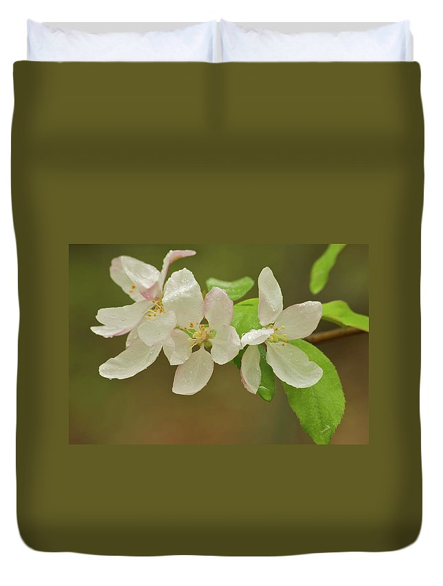 Spring Duvet Cover featuring the photograph Apple Blossoms by Michael Peychich