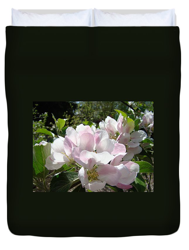 Apple Duvet Cover featuring the photograph Apple Tree Blossoms Art Prints Baslee Troutman by Baslee Troutman